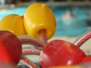 Zwemtraining op woensdag